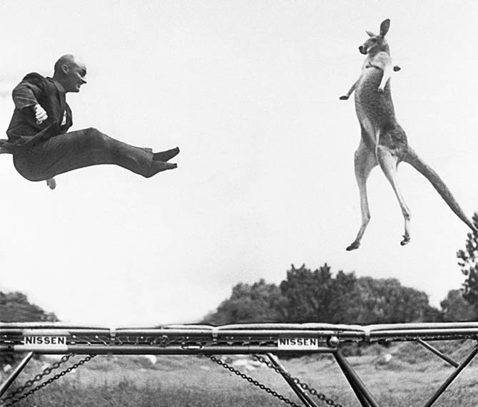 The History of the Trampoline